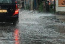 валежи в столицата