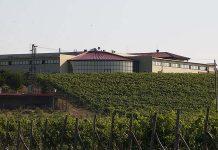 акция винарна Загрей