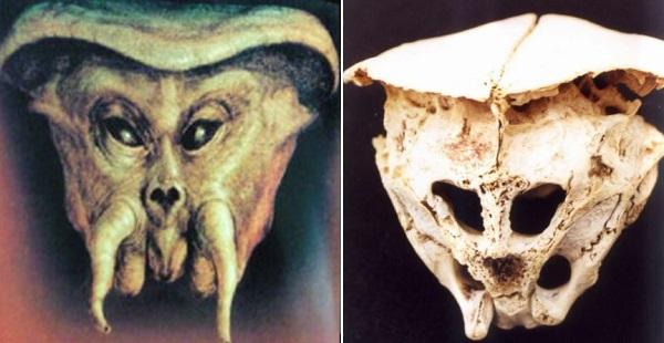 Историята на Родопския извънземен череп и неговото изчезване