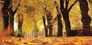 октомври температури