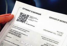 Как да получим зелен сертификат
